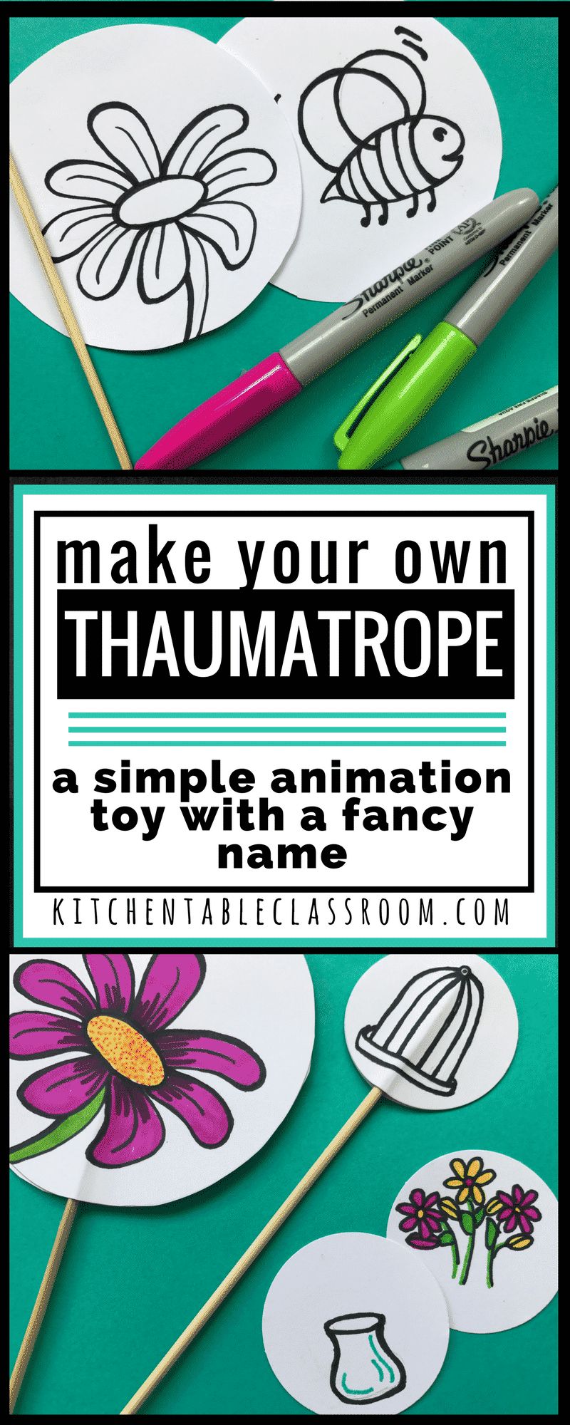 A thaumatrope has a different image on each side. When spun rapidly they give the impression of blending into one.It's simple but also a little magic.