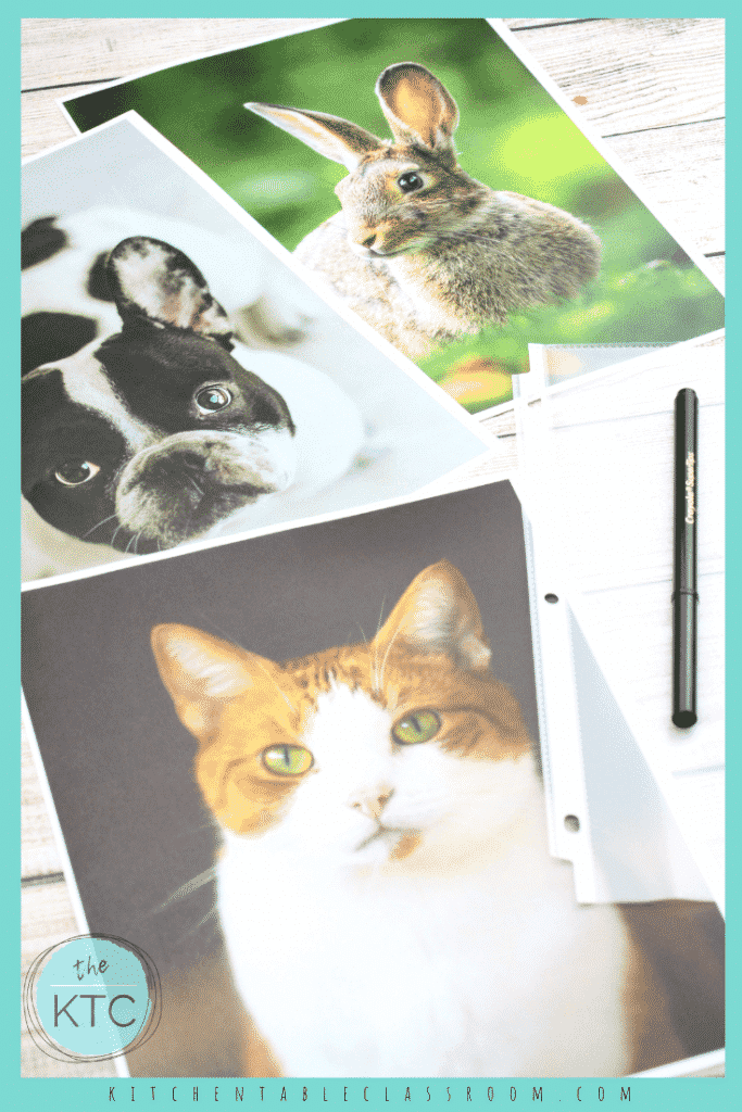 These pet portraits for kids use a fun and easy printmaking technique that make it easy to get great results- easy printmaking for kids!
