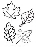 leaf templates for chalk pastel