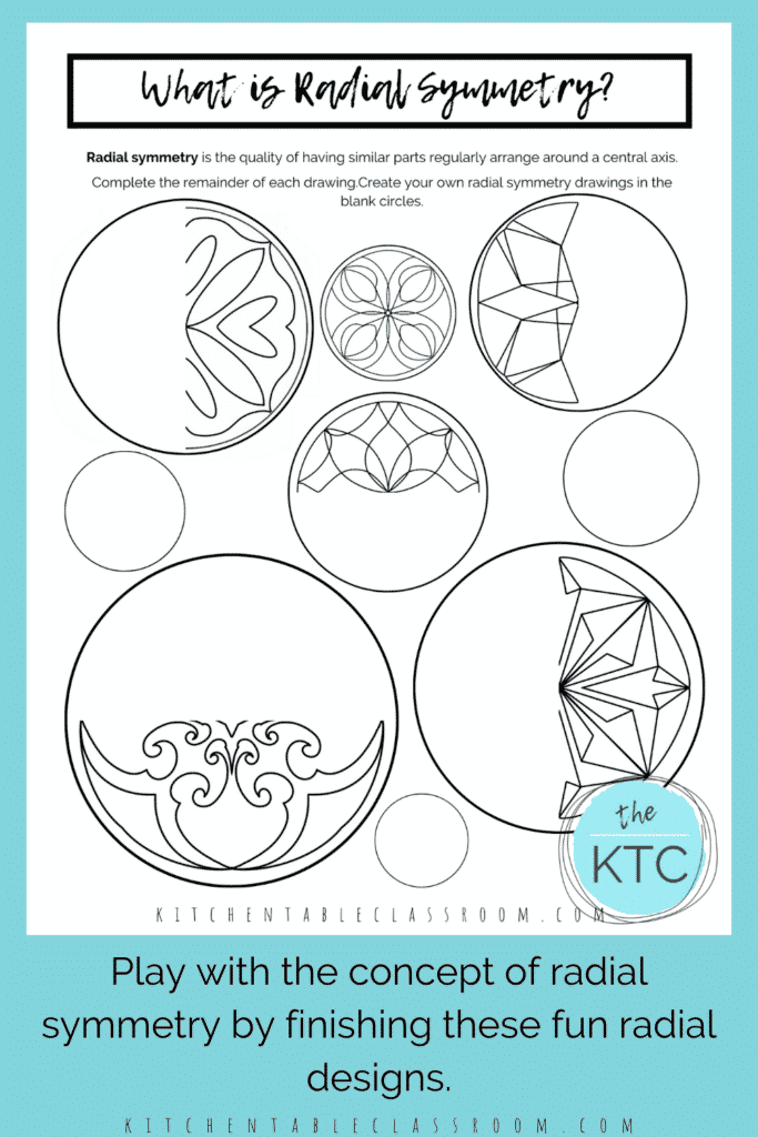 explore the concept of radial symmetry with these line of symmetry worksheets