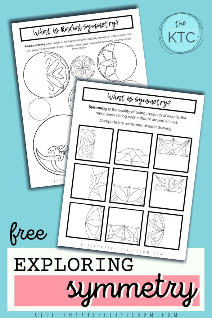 free printable line of symmetry worksheets for kids