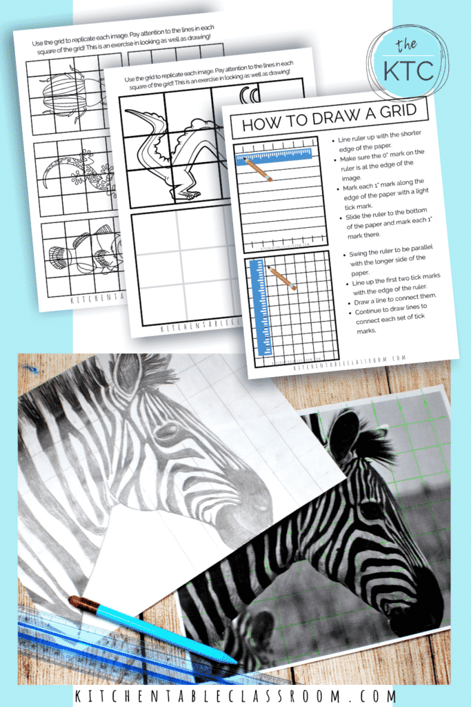 Grid drawing is a great pencil art lesson for kids.