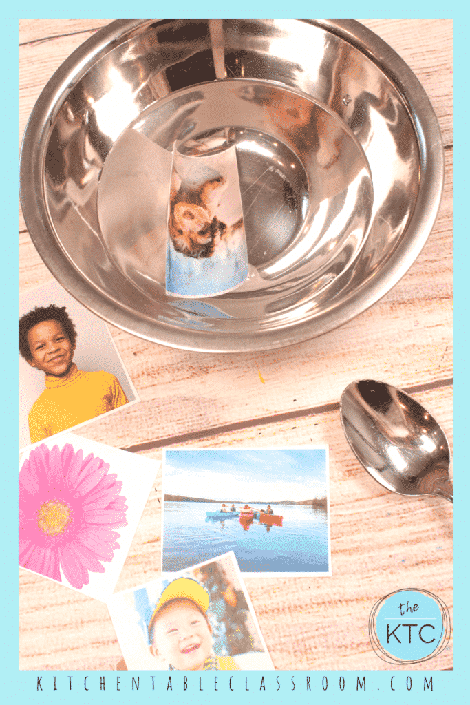 Apply packing tape to photos printed with a laser printer for this easy image transfer method.