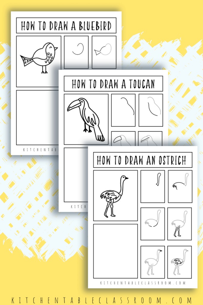 learn how to draw a bluebird, how to draw a toucan, how to draw an ostrich and more with these printable how to draw a bird guides